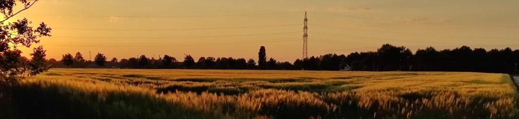 Felder zwischen Mönchengladbach Holt und Pongs - Heimat der Familie Seidel